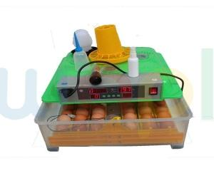 حاضنة تفريخ البيض الصناعي التلقائي 48 بيضة
