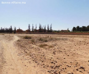 Deux parcelles 1 ha à vendre route de Fès km 13 Marrakech