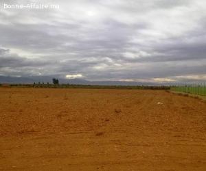 Terrain titré 6 ha à Mzouda