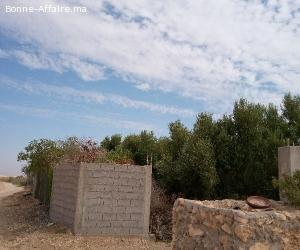 une belle ferme région Marrakech