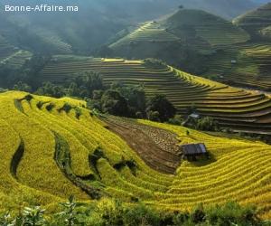 Visages du Viêt Nam